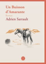 unbuissond'amarante-couverture-web